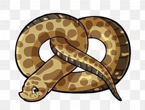 Snake - Boa Constrictor Hognose Snake Rattlesnake Vipers PNG