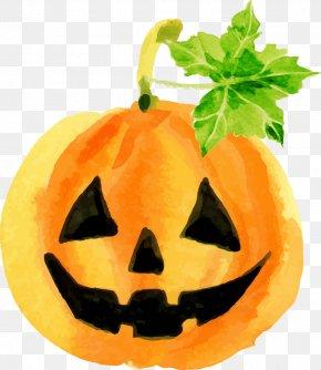 Halloween Pumpkin Watercolor - Halloween Pumpkin Jack-o'-lantern Qin Taoyuan Super Group Corporation Calabaza PNG