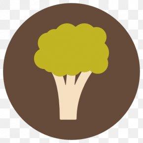 Broccoli - Organic Food Italian Cuisine Vegetarian Cuisine Broccoli Slaw PNG