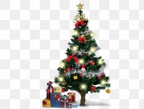 Christmas Tree - Santa Claus Christmas Tree Christmas Ornament Christmas Decoration PNG