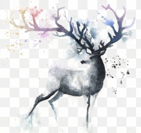 Ink Deer - Deer Watercolor Painting Out Of The Cot Art PNG