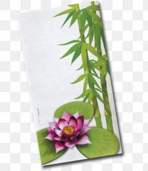 Design - Floral Design Flowerpot Leaf Flowering Plant PNG