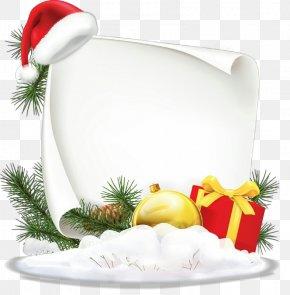 Pine Family Christmas Eve - Fir Christmas Eve Pine Family PNG