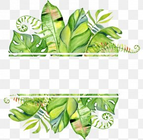 Tropical Frame Leaf - Watercolor Painting Clip Art Stock Illustration Drawing PNG
