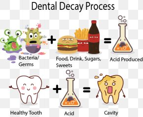 Dental Caries - Tooth Decay Human Tooth Dentistry Tooth Enamel PNG