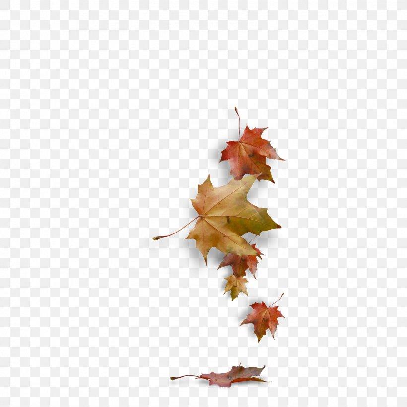 Autumn Clip Art, PNG, 1598x1600px, Autumn, Autumn Leaf Color, Branch, Facebook, Fashion Download Free