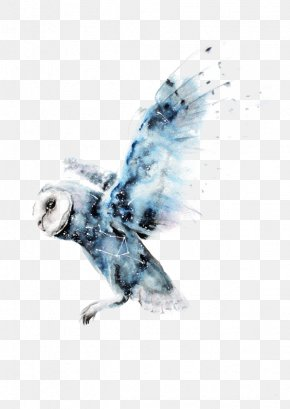 Watercolor Owl - Owl Watercolor Painting Harry Potter Art Drawing PNG