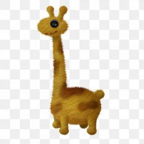 Plush Giraffe - Giraffe Pixabay Illustration PNG