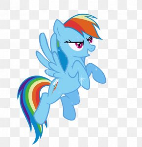 Rainbow Dash Vector Standing Clipart - Rainbow Dash Rarity Princess Celestia My Little Pony PNG