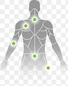 Trigger Point - Myofascial Trigger Point Trigger Point Therapy Shoulder Muscle Lumbar PNG
