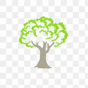 Green Tree - Tree Logo Woody Plant Anacardiaceae Branch PNG