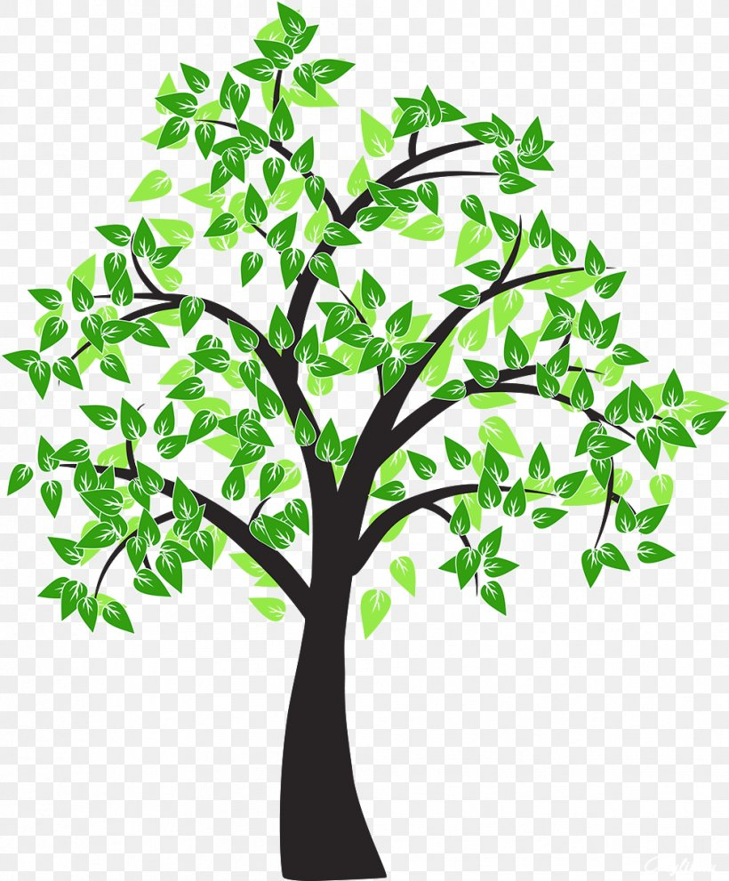 Tree Drawing Cottonwood Leaf Png 992x1200px Tree Branch Cartoon Cottonwood Deciduous Download Free Choose from over a million free vectors, clipart graphics, vector art images, design templates, and illustrations created by artists worldwide! tree drawing cottonwood leaf png