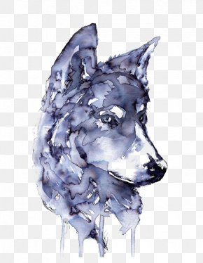 Wolf - Gray Wolf Watercolor Painting Drawing Printmaking PNG
