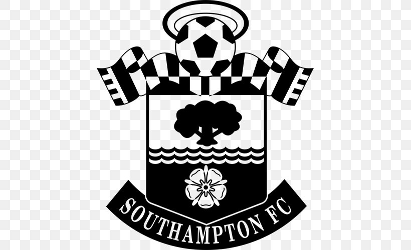 southampton f c premier league manchester united f c st mary s stadium english football league png 500x500px southampton stadium english football league png