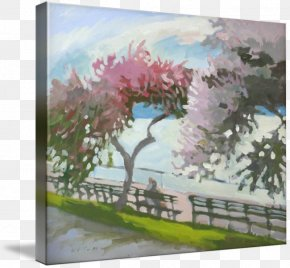 Cherry Blossom - Cherry Blossom Watercolor Painting Acrylic Paint PNG