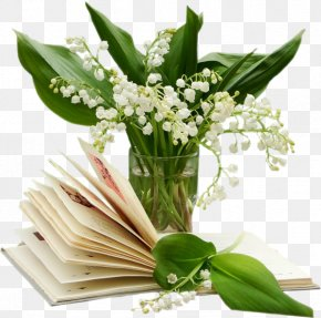 Lily Of The Valley - Lily Of The Valley 1 May Marriage Month PNG
