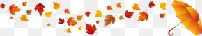 Withered Autumn Leaves - Red Maple Autumn Leaf Color Maple Leaf PNG