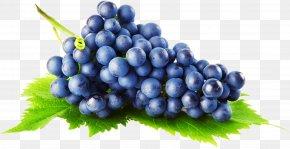 Grape Image - Common Grape Vine Grape Pie PNG