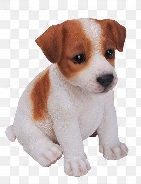 Lifelike - Jack Russell Terrier Puppy Yorkshire Terrier German Shepherd King Charles Spaniel PNG