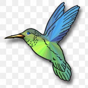 Hummingbird Cartoon - Broad-tailed Hummingbird Clip Art PNG