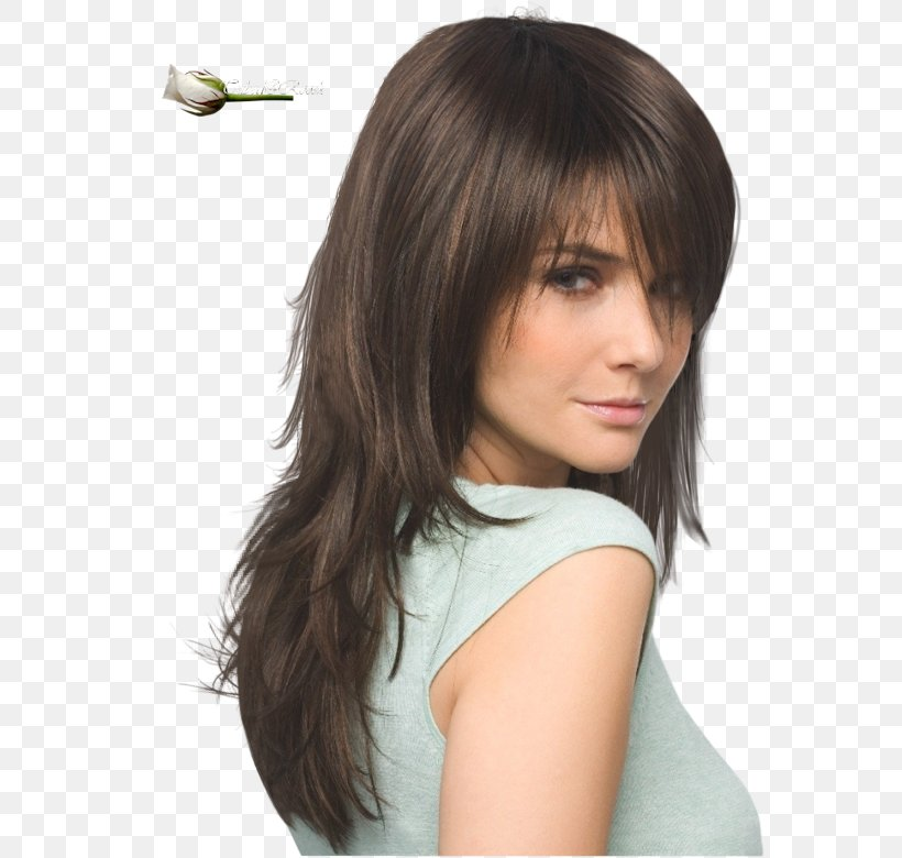 Hairstyle Bangs Layered Hair Long Hair Png 570x780px