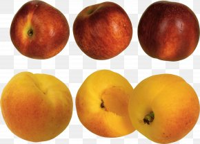 Peach Image - Peach Apricot Download PNG