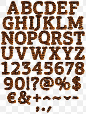 Letter Case Alphabet Font - Calligraphy Typeface Font PNG