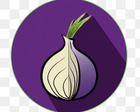 Onion - Tor Browser Computer Security .onion Computer Software PNG