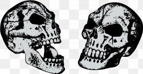 Skull - Skull Download PNG
