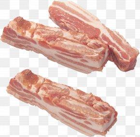 Bacon - Bacon Ragout Embutido Meat PNG