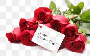 Valentine's Day - Valentine's Day Gift Rose Day 2018 February 14 PNG