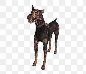 Goat - Great Dane Goat Stock Photography Royalty-free PNG