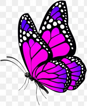 Butterfly Pink Clip Art Image - Monarch Butterfly Clip Art PNG