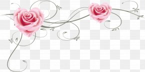 Pink Roses - Garden Roses Beach Rose Pink Vecteur PNG