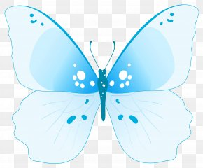 Blue Butterfly - Butterfly Insect Clip Art PNG