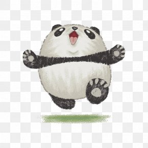 Hand-painted Panda - Giant Panda Bear Drawing Dribbble Illustration PNG