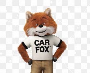 Car - Carfax Used Car Car Dealership Vehicle PNG