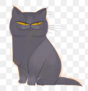 Black Cat - Bombay Cat British Shorthair Black Cat Domestic Short-haired Cat Tabby Cat PNG