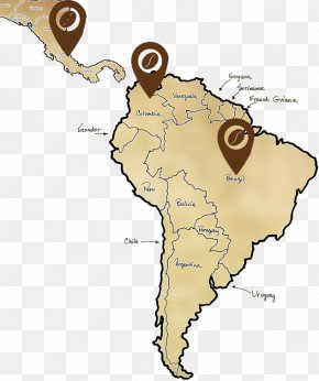 United States - South America United States World Map Blank Map PNG