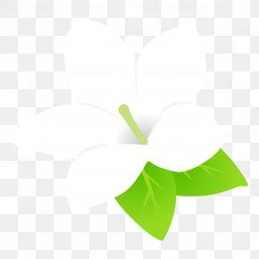 Anthurium Logo - Green Leaf White Plant Line PNG