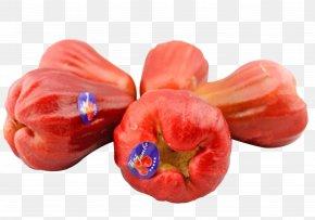 KINGBOX Wax Apple Imports - Java Apple PNG