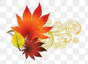 Fall Leaves Decoration Clipart Picture - Autumn Leaf Color Clip Art PNG