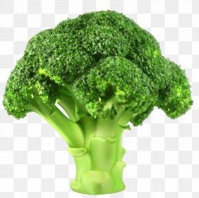 Cauliflower - Broccoli Cauliflower Vegetable Clip Art PNG