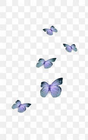 Butterfly Desktop Wallpaper Aesthetics Clip Art Png 500x501px