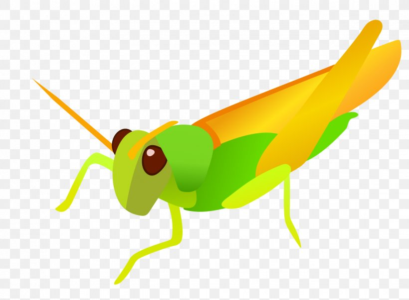Clip Art, PNG, 1122x826px, Insect, Caelifera, Cartoon, Cicadidae, Fauna Download Free