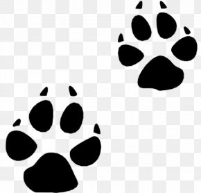 Bobcat Track Cliparts - Bear Animal Track Squirrel Footprint Clip Art PNG