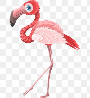 Hand-painted Cartoon Animal Standing Flamingo - Flamingo Cartoon Postcard Pink Greeting Card PNG