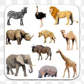 Africa - Fauna Of Africa Rhinoceros Okapi African Bush Elephant PNG