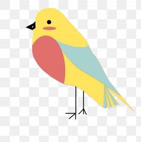Bird - Bird Download Animal PNG
