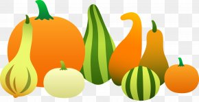 Free Thanksgiving Vector Art - Thanksgiving Autumn Pilgrim Clip Art PNG